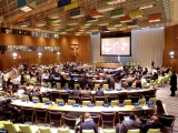 United Nations Open Working Group: Focus Areas for SDGs
