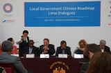 The Role of Local Governments in Climate Mitigation and Adaptationefforts